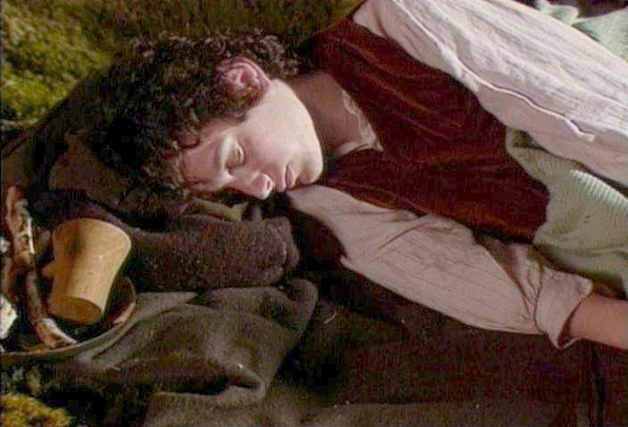 Frodo gets it.  How can anyone stay awake for this stuff?
