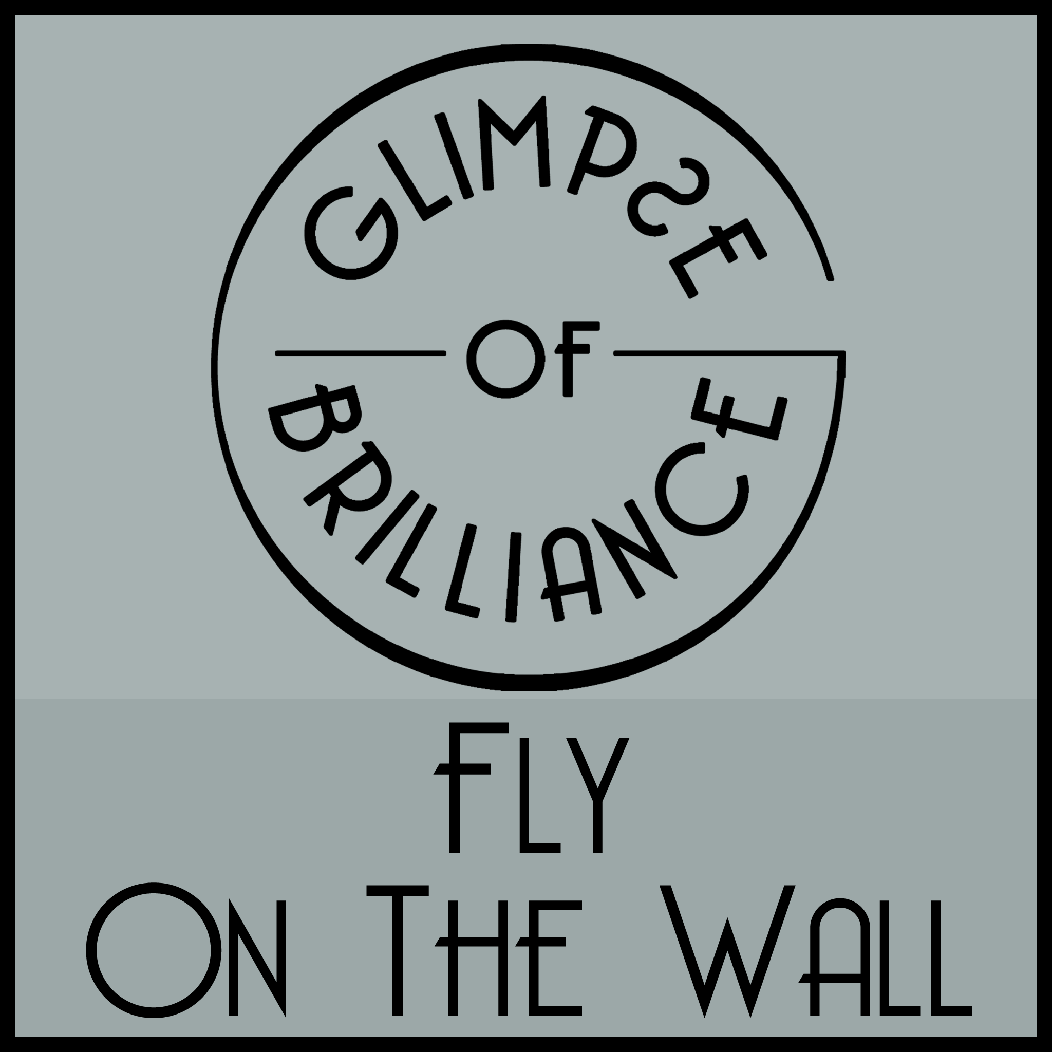 Fly On The Wall - Glimpse of Brilliance