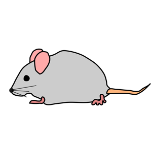Whoever Said Quiet As a Mouse | RANT